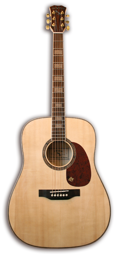 Mcbrides TORAIGH Acoustic Guitar