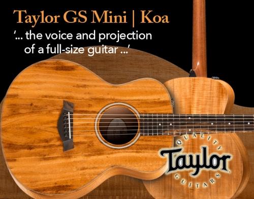 Taylor-MiniGSKoa-News